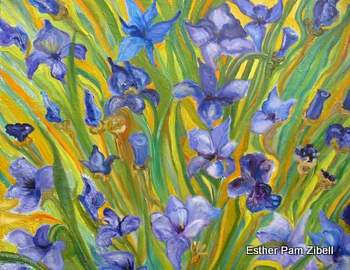 Patch of irises